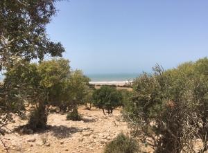 Morocco Tizi N'Trail 2018 -Essaouira - GO2EVENTS
