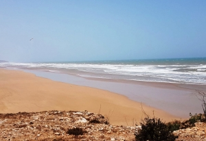 Morocco Tizi N'Trail 2018 -Essaouira - GO2EVENTS