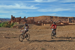 Transmarocaine Mountain Bike 14