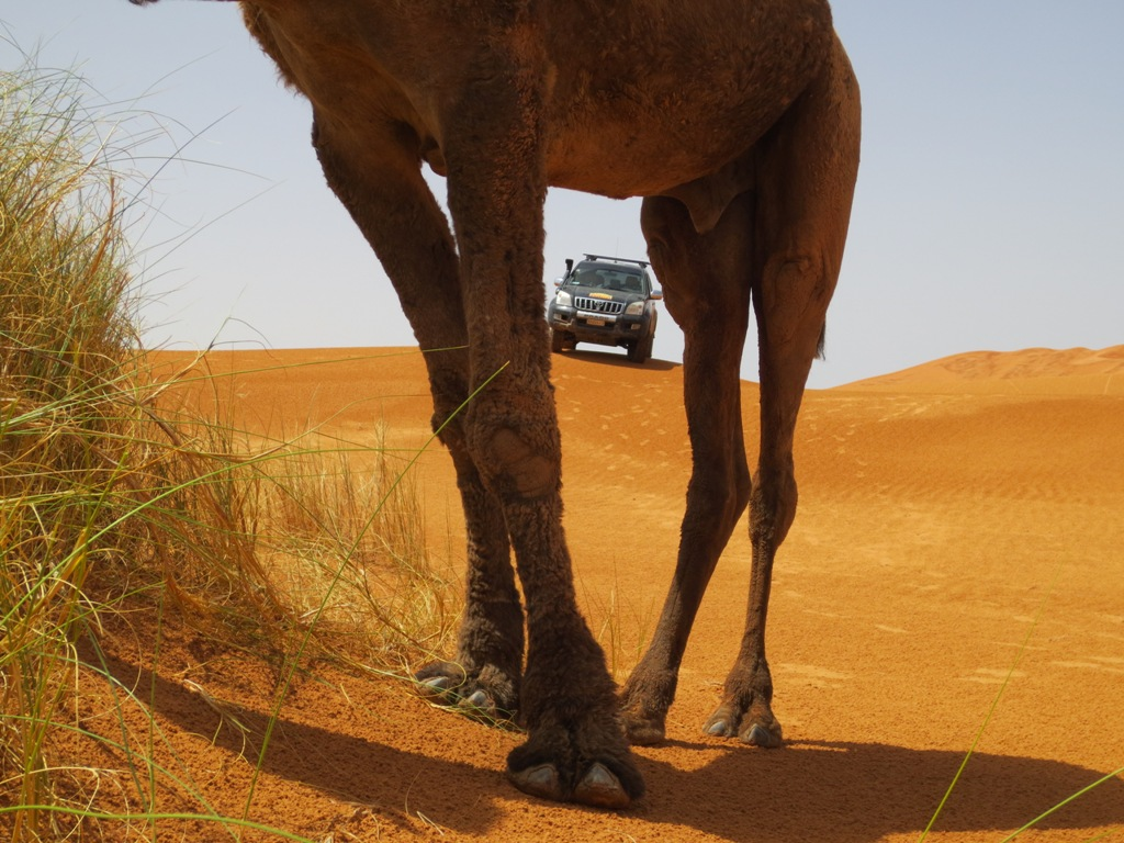 Raid 4x4 Maroc -GO2EVENTS